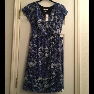 NWT, Loft, Dress, size 8, Blue and Purple Floral
